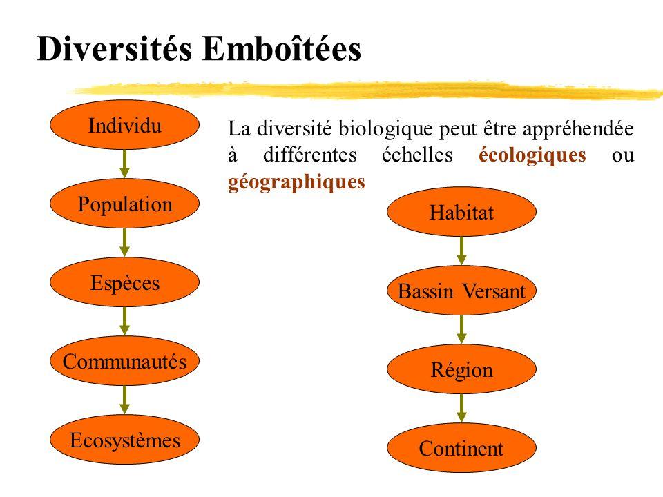 Diversités Emboîtées Individu