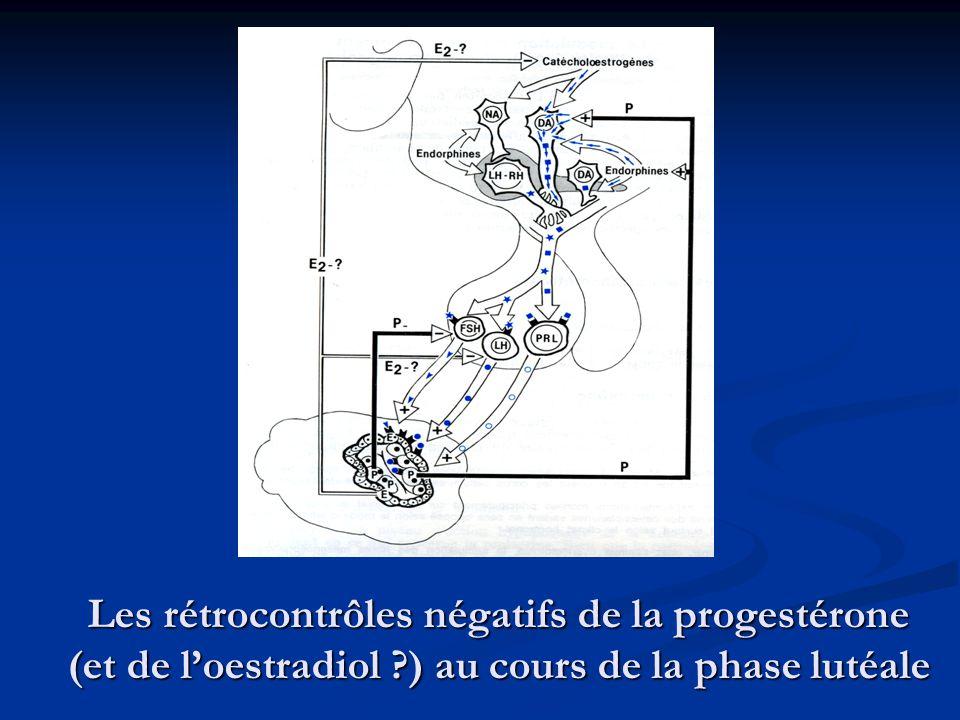 Les rétrocontrôles négatifs de la progestérone (et de l'oestradiol
