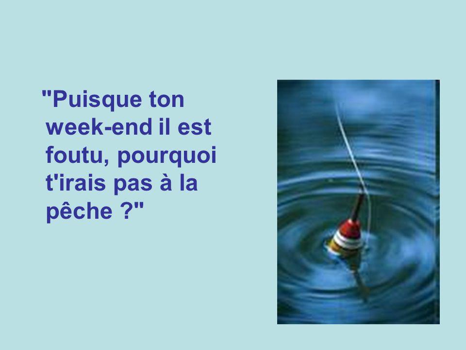 Puisque ton week-end il est foutu, pourquoi t irais pas à la pêche
