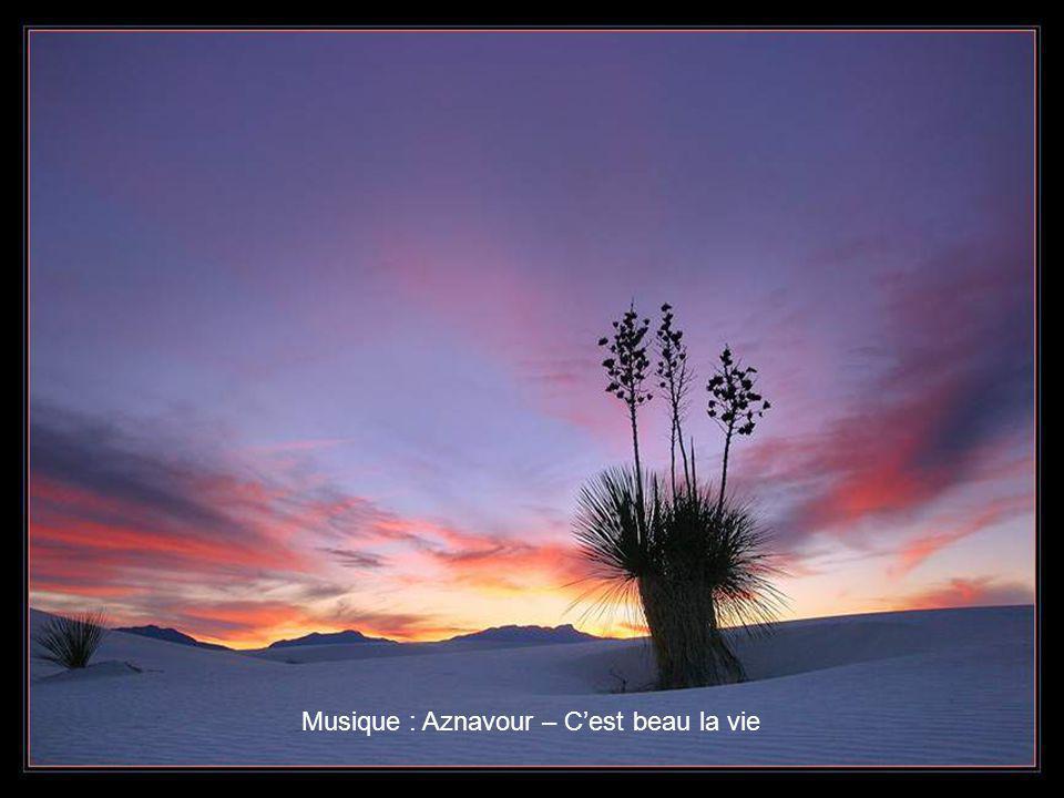 Musique : Aznavour – C'est beau la vie