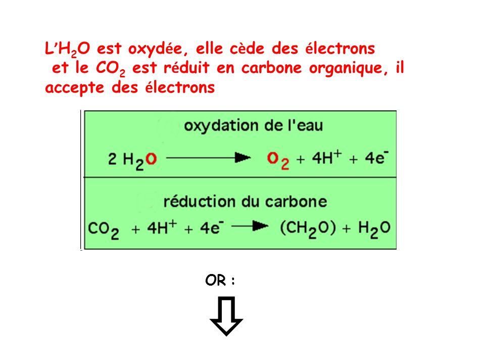  L'H2O est oxydée, elle cède des électrons