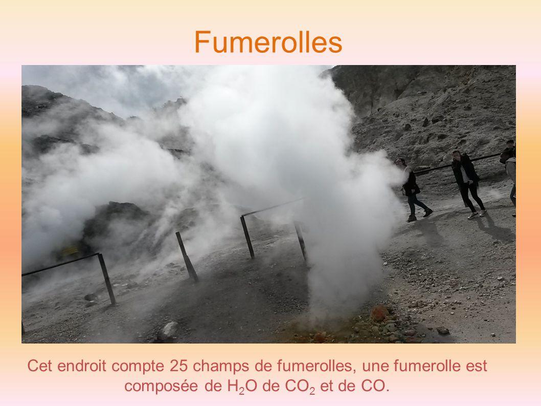 Fumerolles Cet endroit compte 25 champs de fumerolles, une fumerolle est composée de H2O de CO2 et de CO.