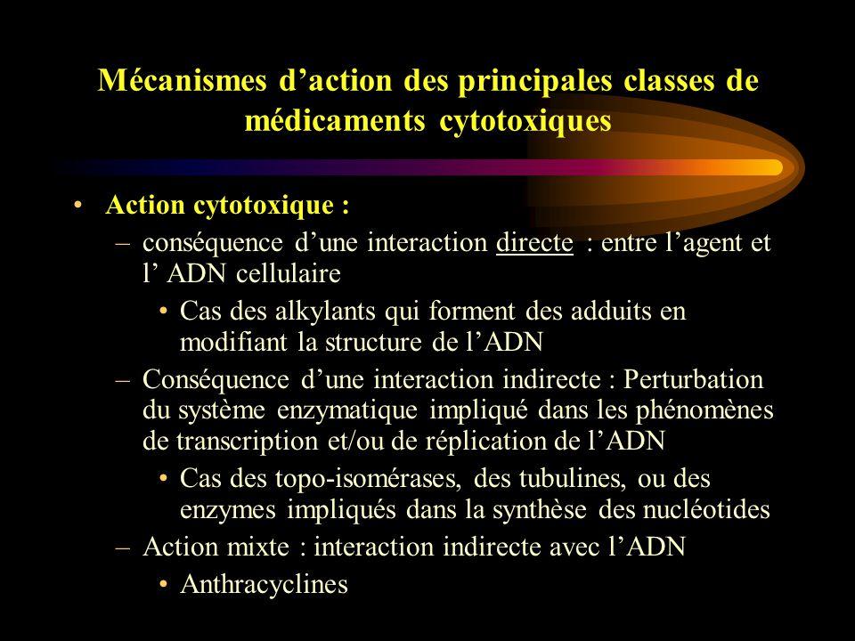 Mécanismes d'action des principales classes de médicaments cytotoxiques
