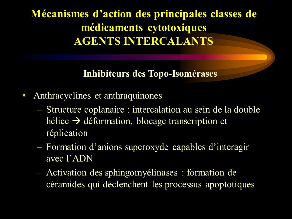 Mécanismes d'action des principales classes de médicaments cytotoxiques AGENTS INTERCALANTS