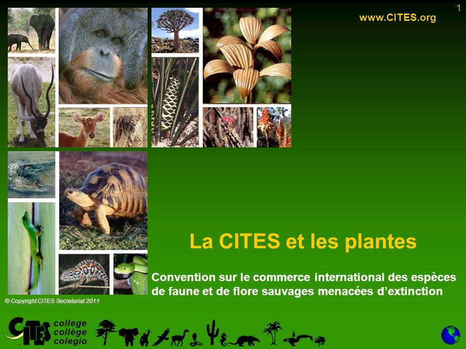 www.CITES.org La CITES et les plantes. Convention sur le commerce international des espèces de faune et de flore sauvages menacées d'extinction.