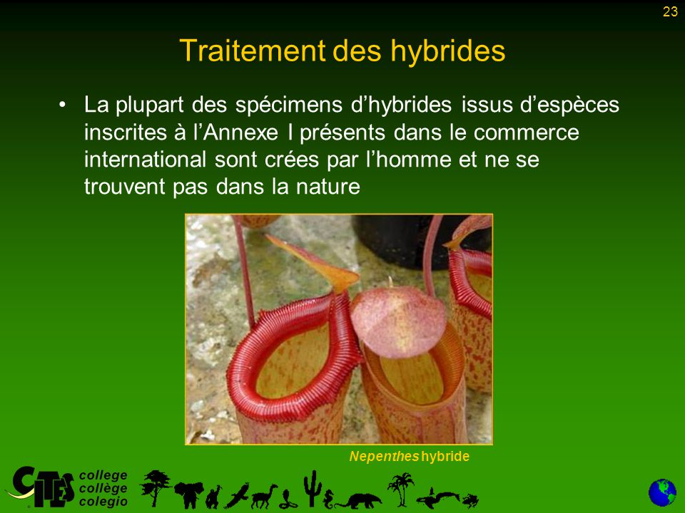 Traitement des hybrides