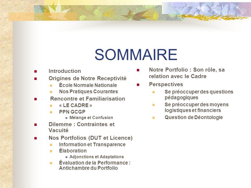 SOMMAIRE Notre Portfolio : Son rôle, sa relation avec le Cadre