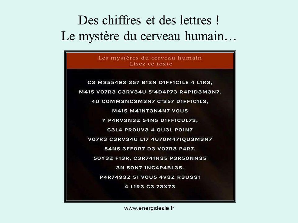 Des chiffres et des lettres ! Le mystère du cerveau humain…
