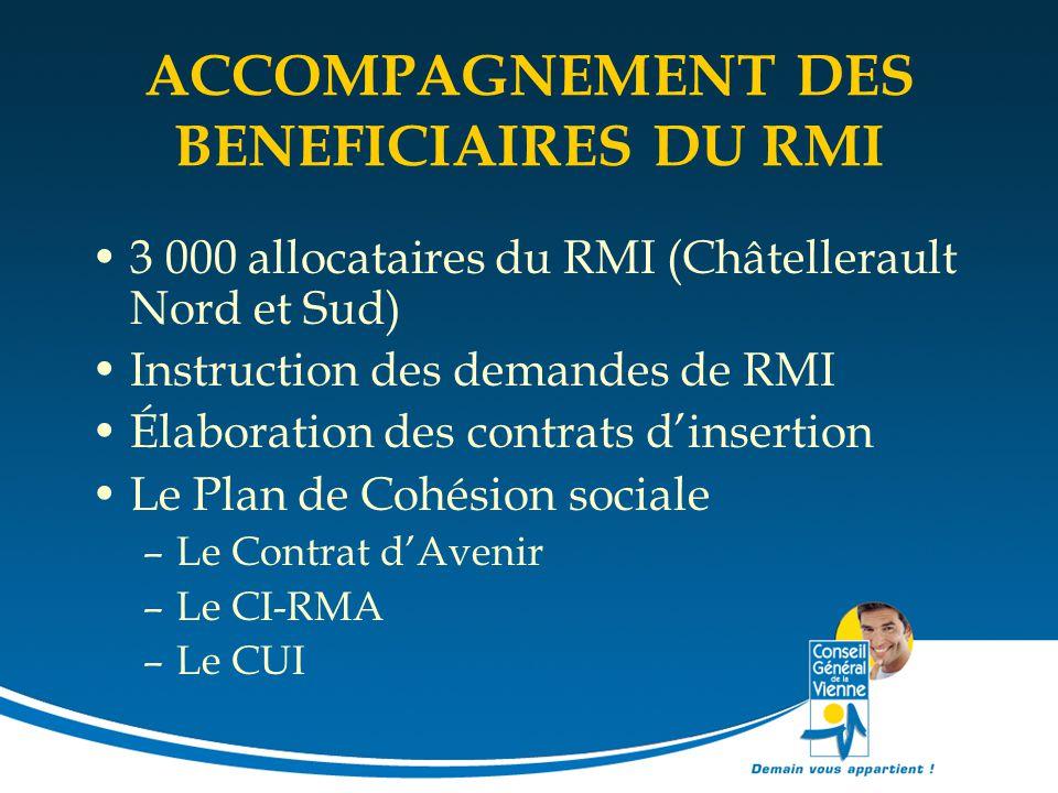 ACCOMPAGNEMENT DES BENEFICIAIRES DU RMI