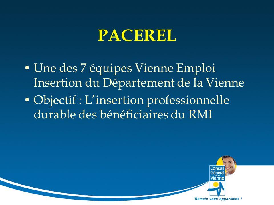 PACEREL Une des 7 équipes Vienne Emploi Insertion du Département de la Vienne.