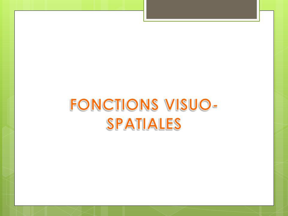 FONCTIONS VISUO-SPATIALES