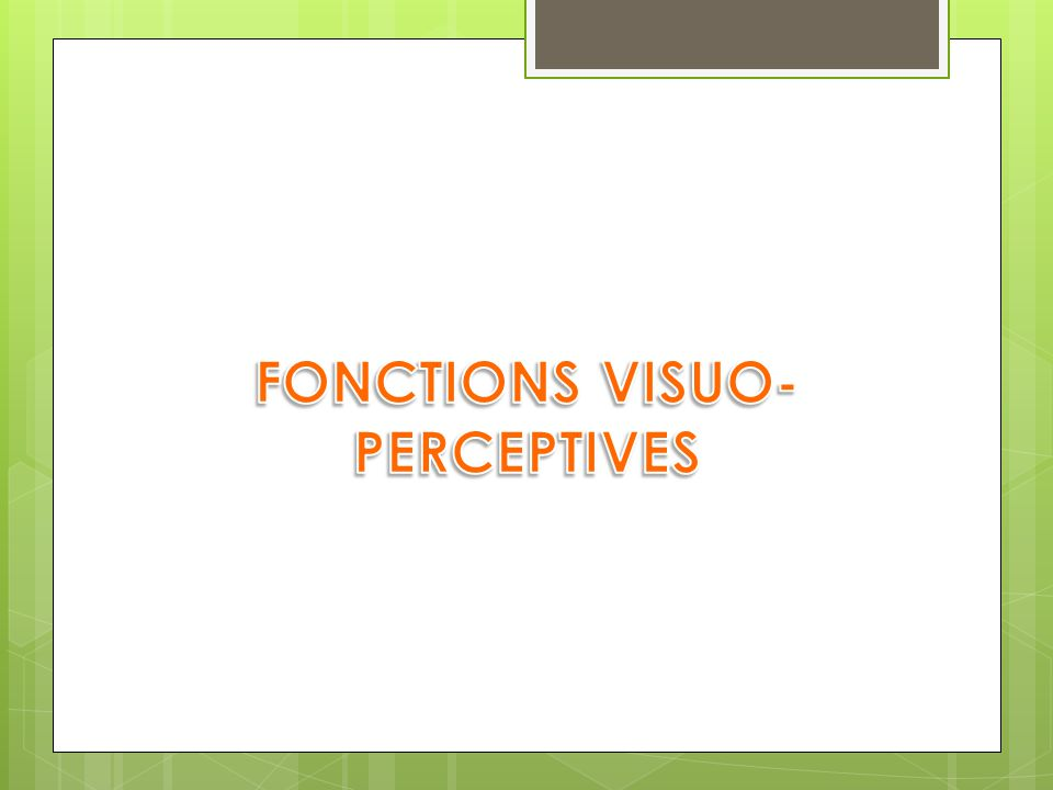 FONCTIONS VISUO-PERCEPTIVES