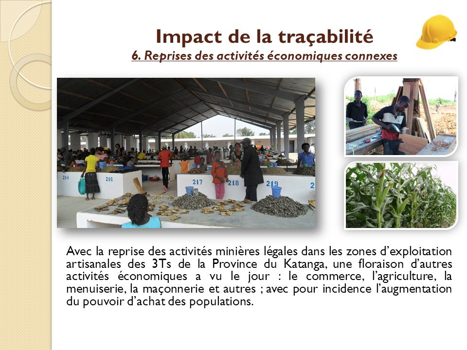 Impact de la traçabilité 6. Reprises des activités économiques connexes