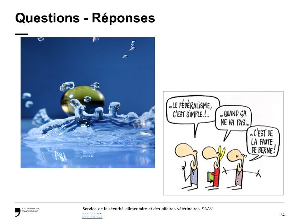 Questions - Réponses —