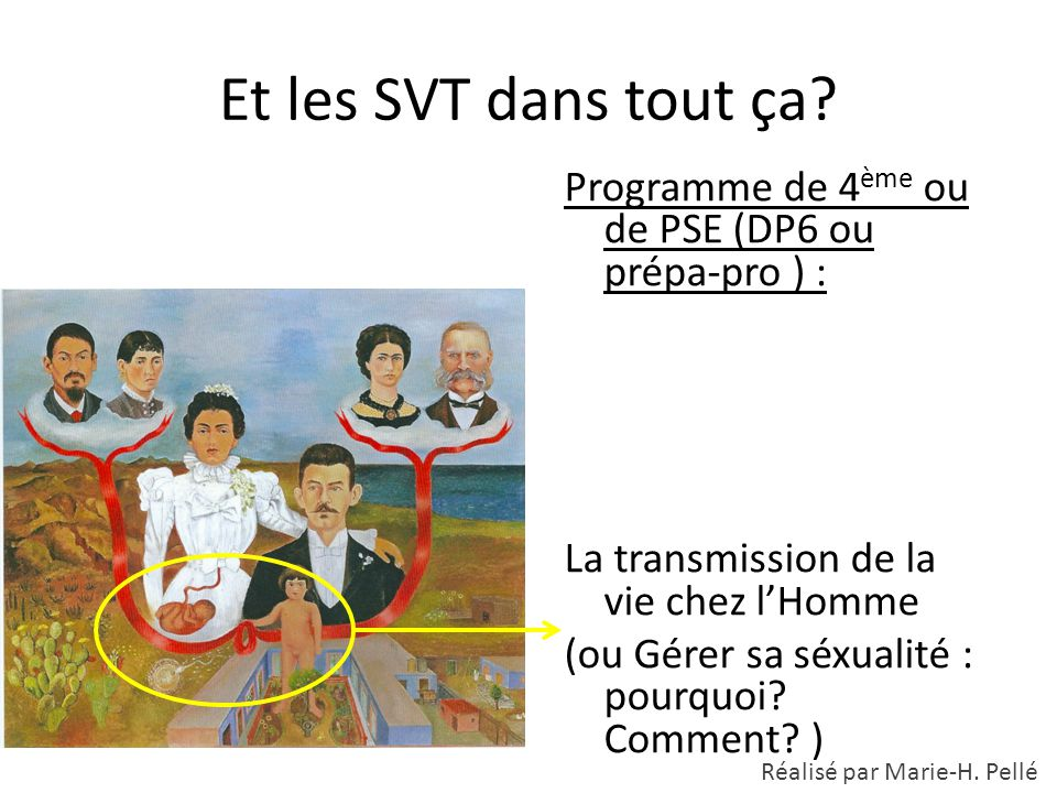 Et les SVT dans tout ça Programme de 4ème ou de PSE (DP6 ou prépa-pro ) : La transmission de la vie chez l'Homme.