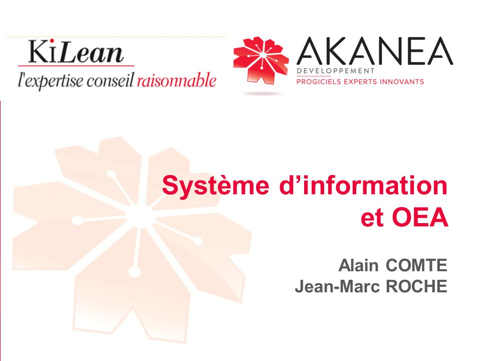 Système d'information et OEA