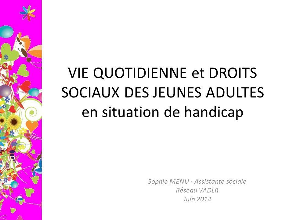 Sophie MENU - Assistante sociale Réseau VADLR Juin 2014