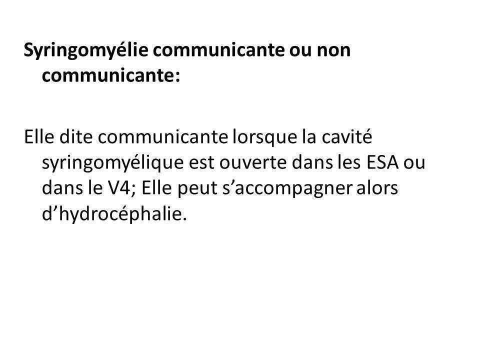 Syringomyélie communicante ou non communicante: