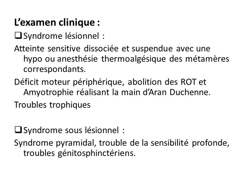 L'examen clinique : Syndrome lésionnel :