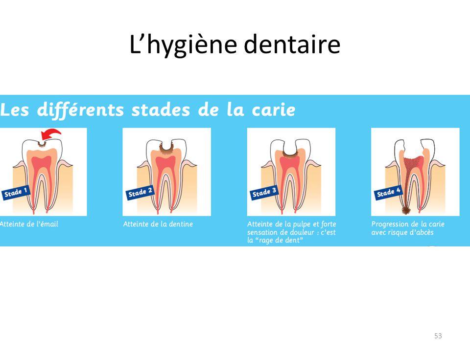 L'hygiène dentaire