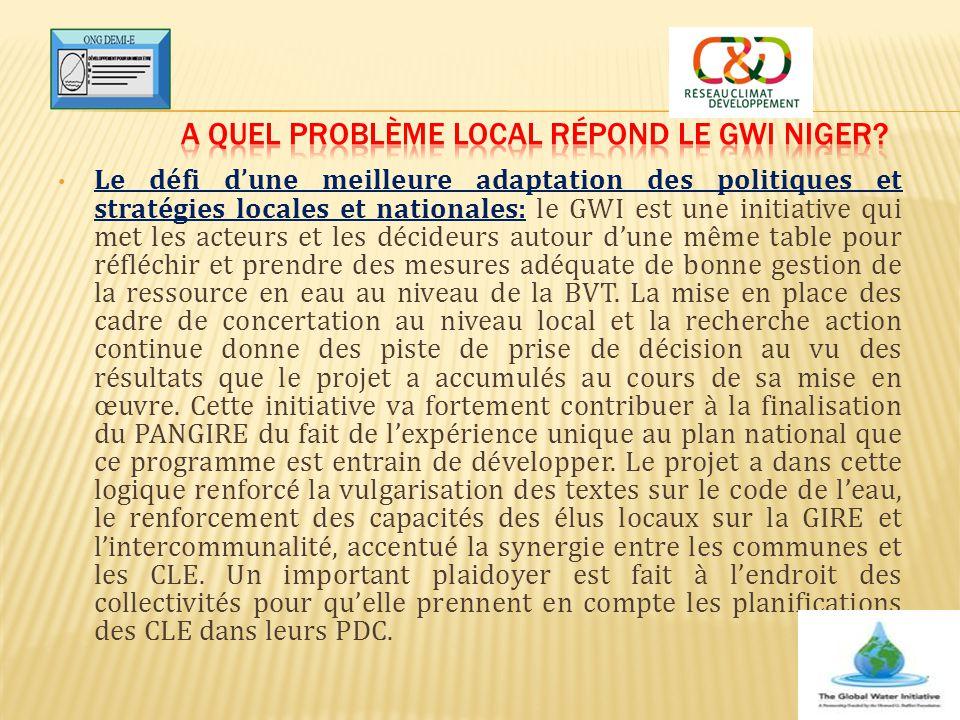 A quel problème local répond le GWI Niger