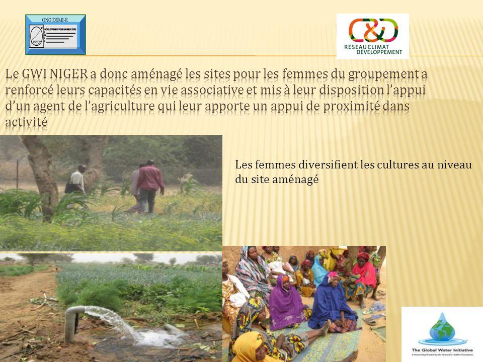 Le GWI Niger a donc aménagé les sites pour les femmes du groupement a renforcé leurs capacités en vie associative et mis à leur disposition l'appui d'un agent de l'agriculture qui leur apporte un appui de proximité dans activité