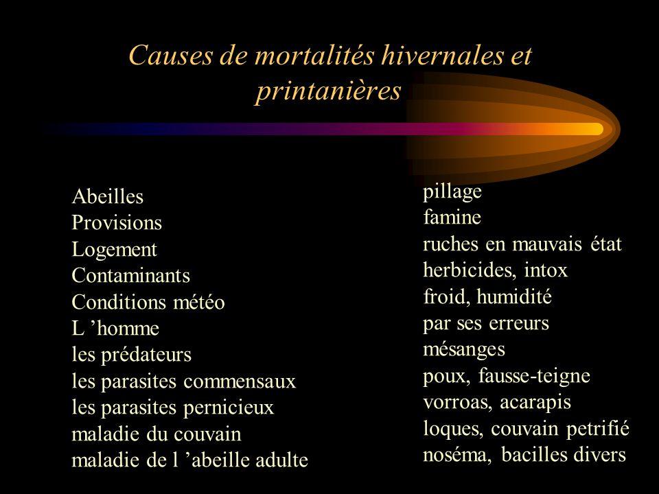 Causes de mortalités hivernales et printanières