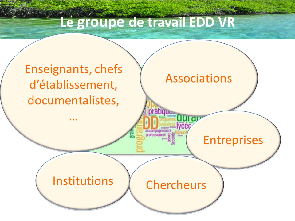 Le groupe de travail EDD VR
