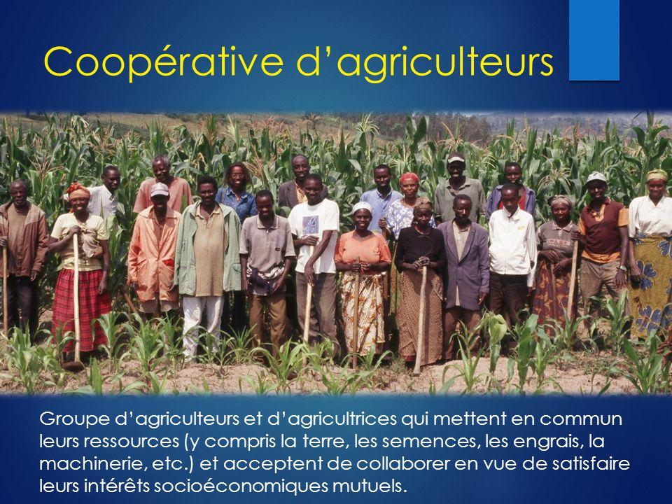 Coopérative d'agriculteurs