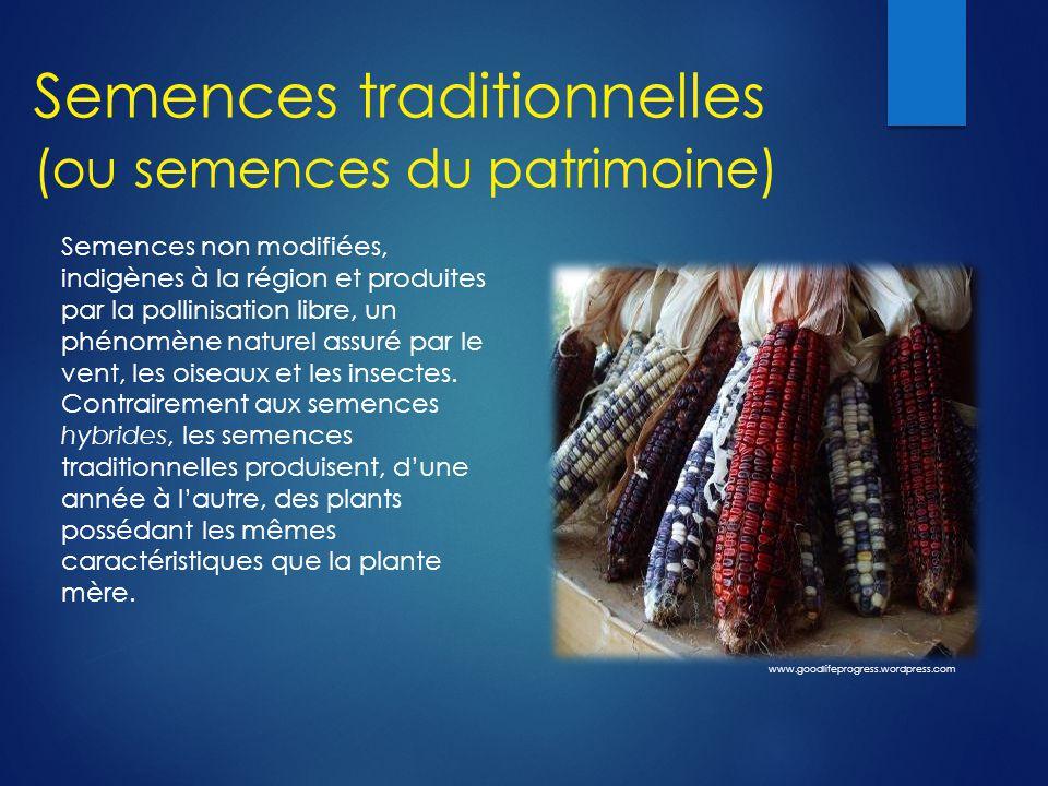 Semences traditionnelles (ou semences du patrimoine)