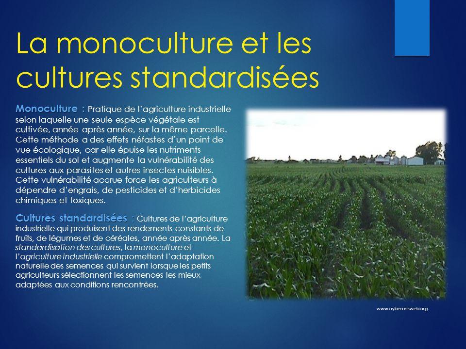 La monoculture et les cultures standardisées