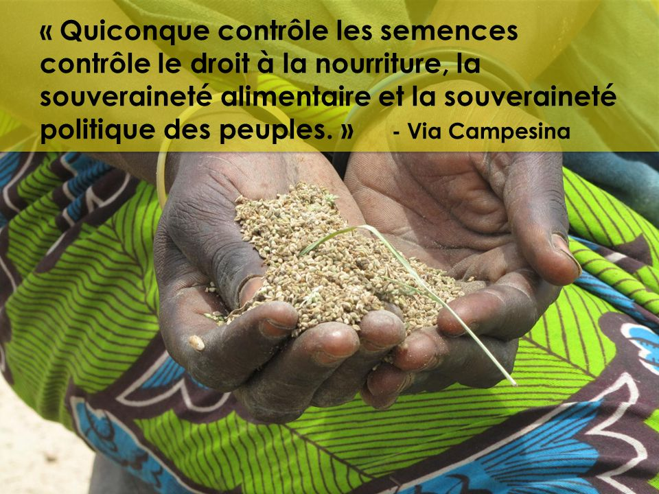 « Quiconque contrôle les semences contrôle le droit à la nourriture, la souveraineté alimentaire et la souveraineté politique des peuples.