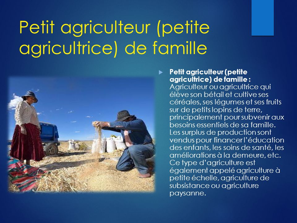 Petit agriculteur (petite agricultrice) de famille