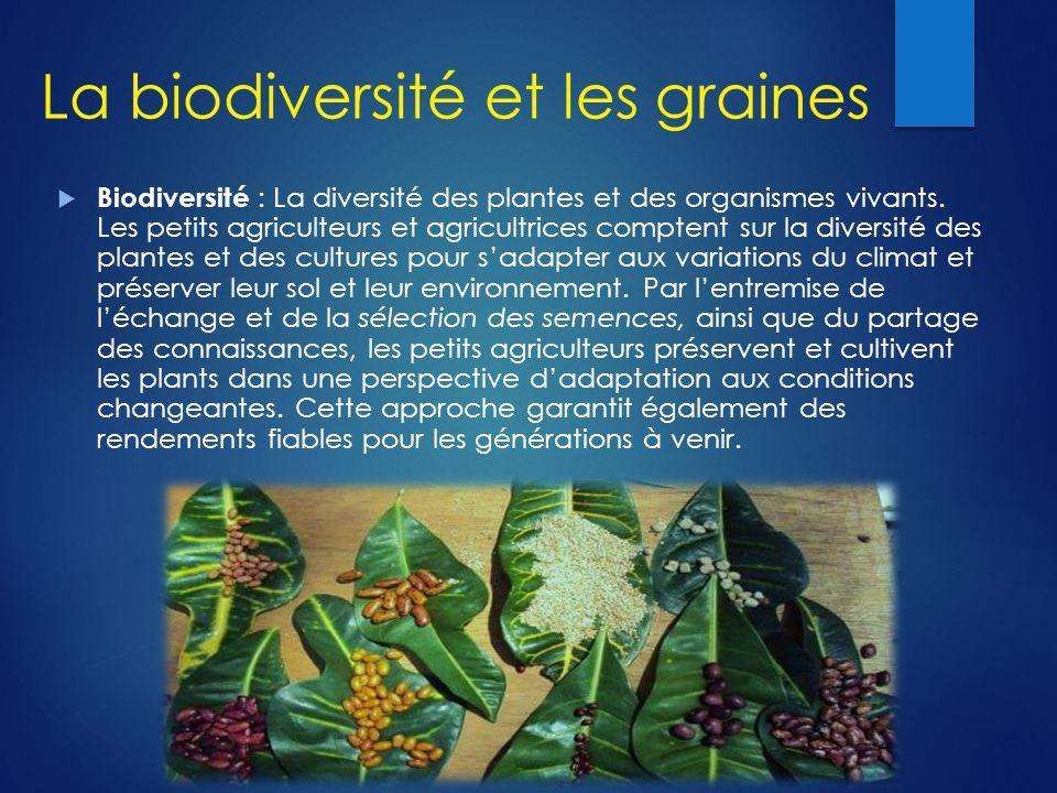 La biodiversité et les graines