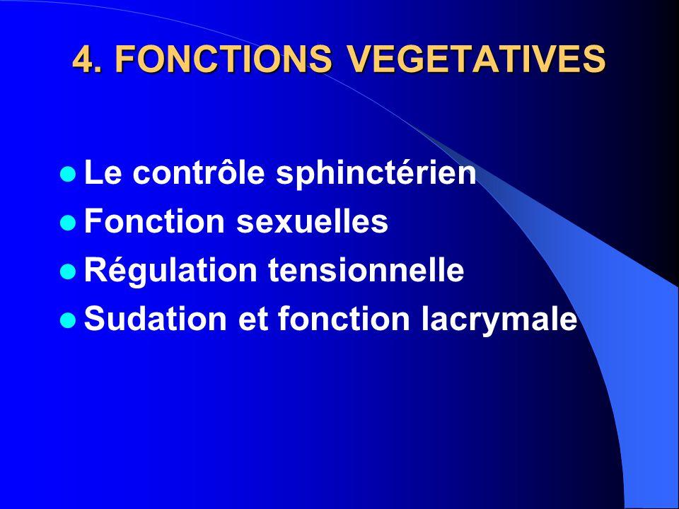 4. FONCTIONS VEGETATIVES