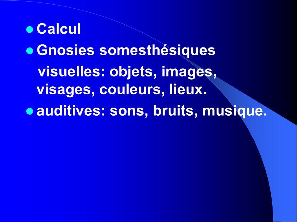 Calcul Gnosies somesthésiques. visuelles: objets, images, visages, couleurs, lieux.