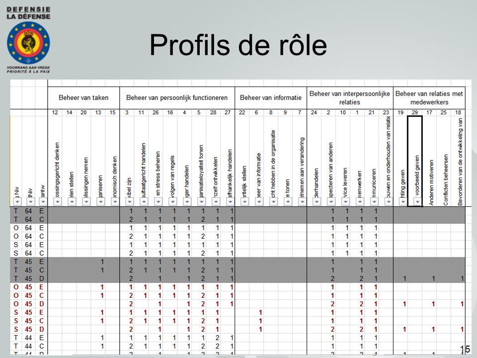 Profils de rôle
