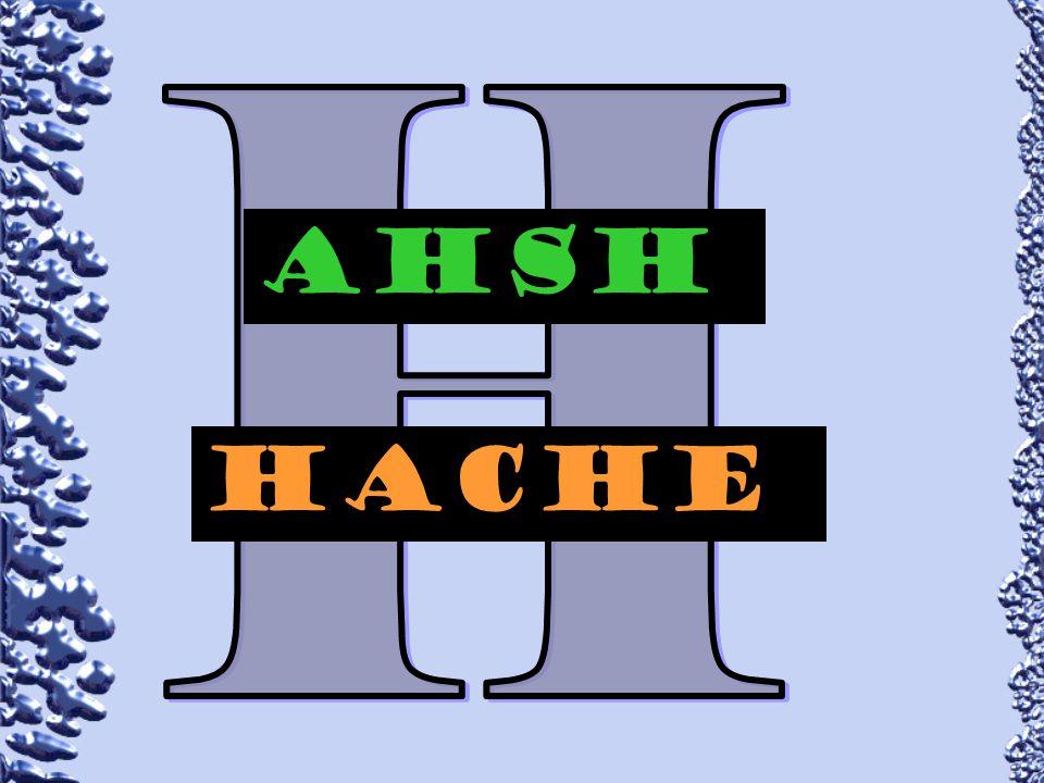 H AHsH hAcHe