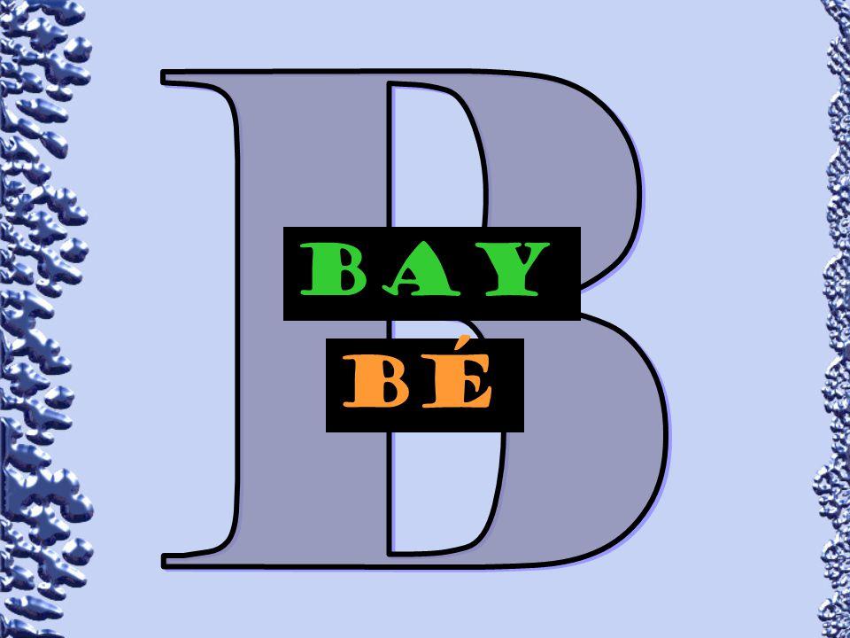 B BAY bÉ