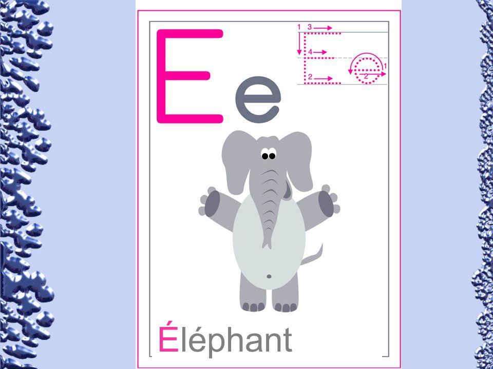 Éléphant 57
