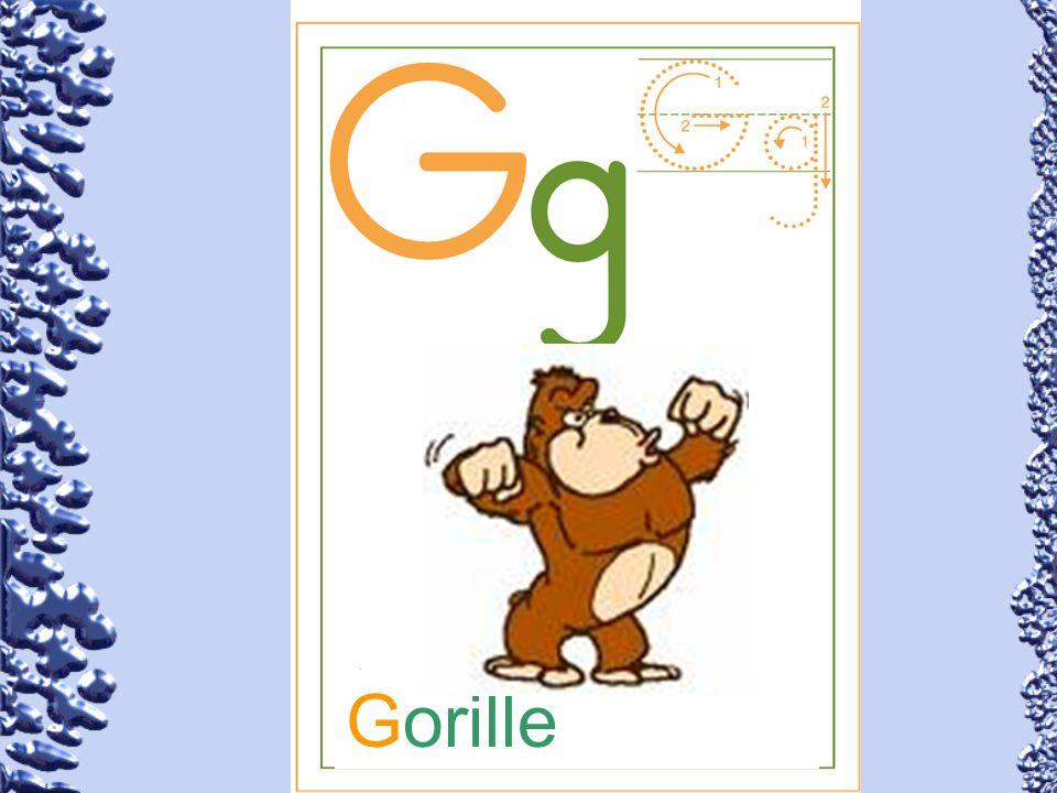 Gorille 59