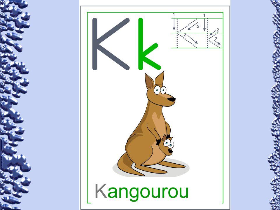 Kangourou 63