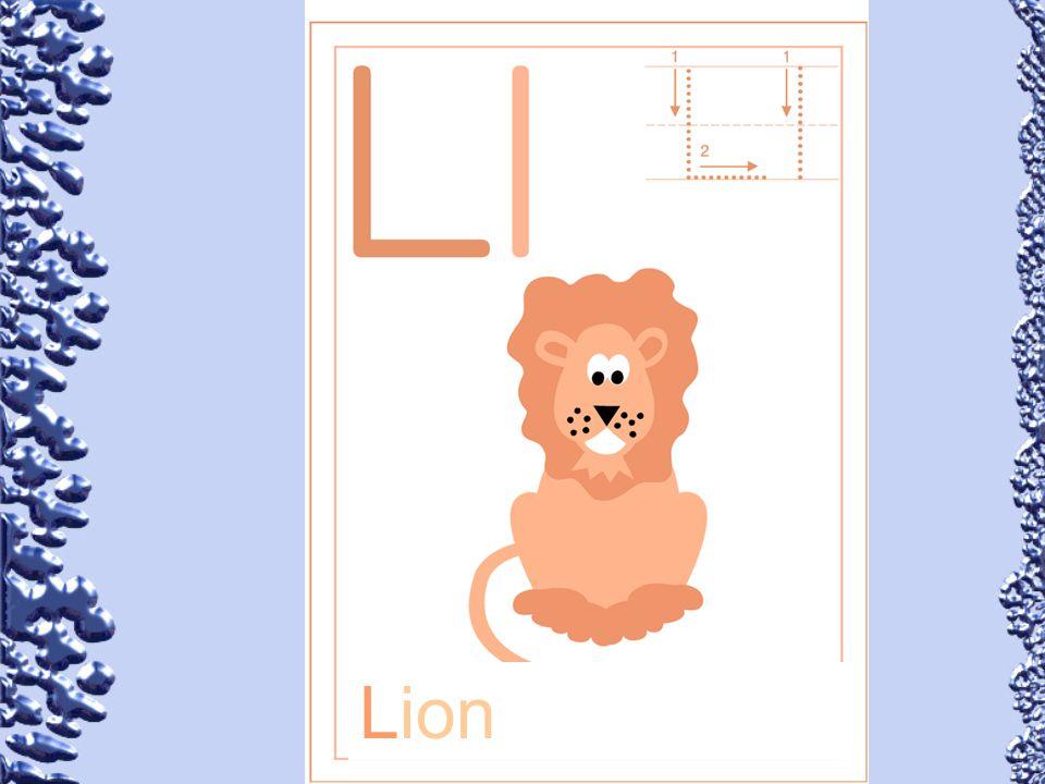 Lion 64