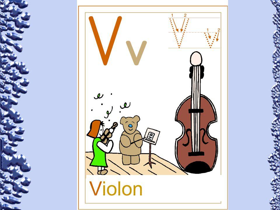 Violon 74