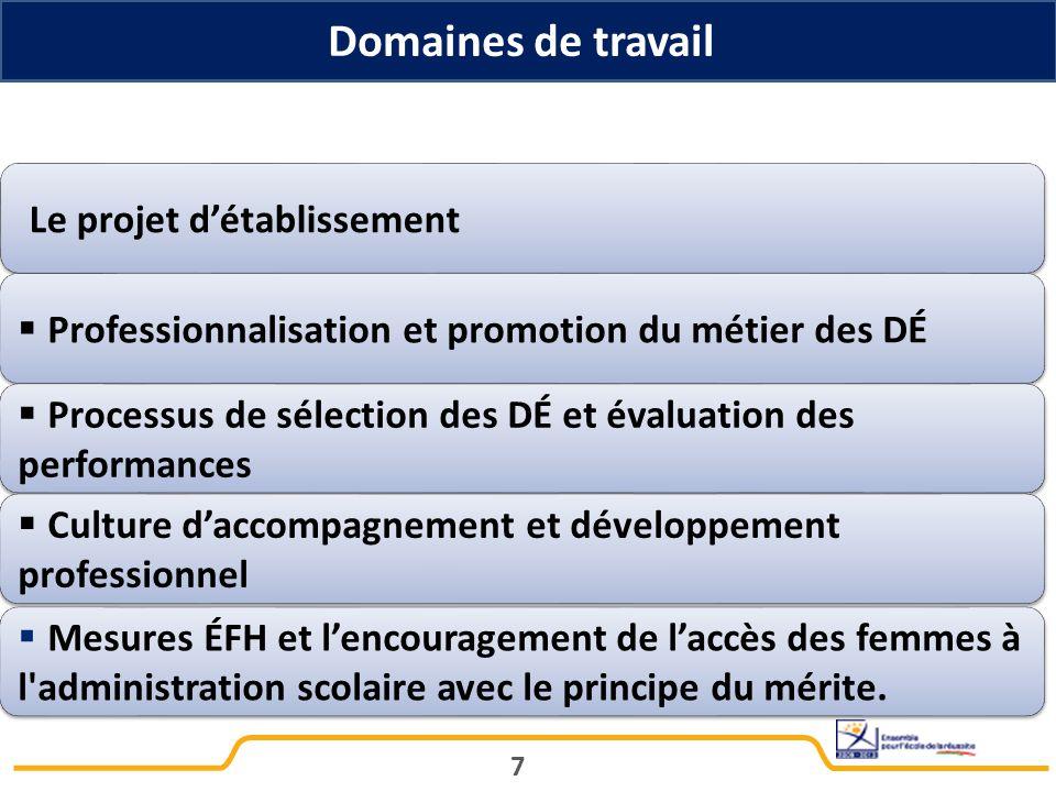 Domaines de travail Le projet d'établissement.  Professionnalisation et promotion du métier des DÉ.