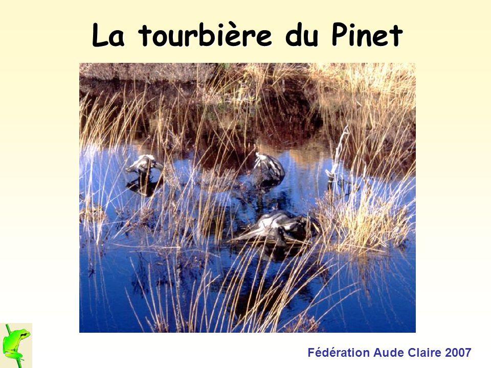 Fédération Aude Claire 2007