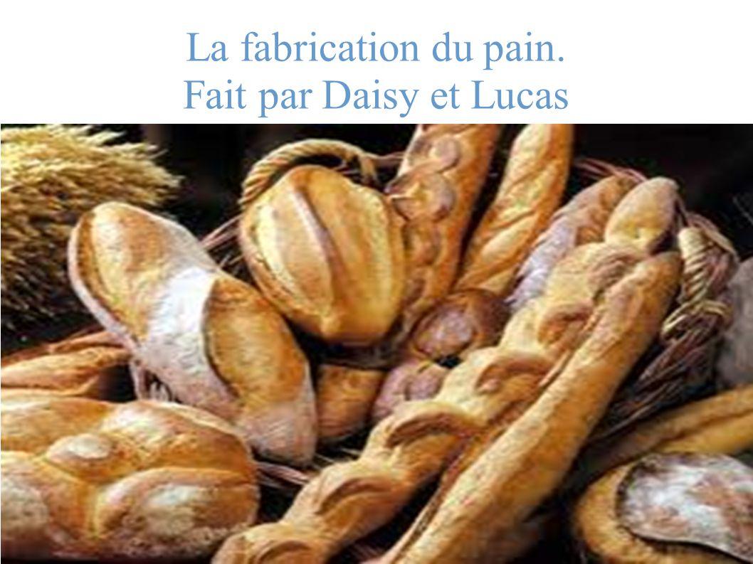 La fabrication du pain. Fait par Daisy et Lucas
