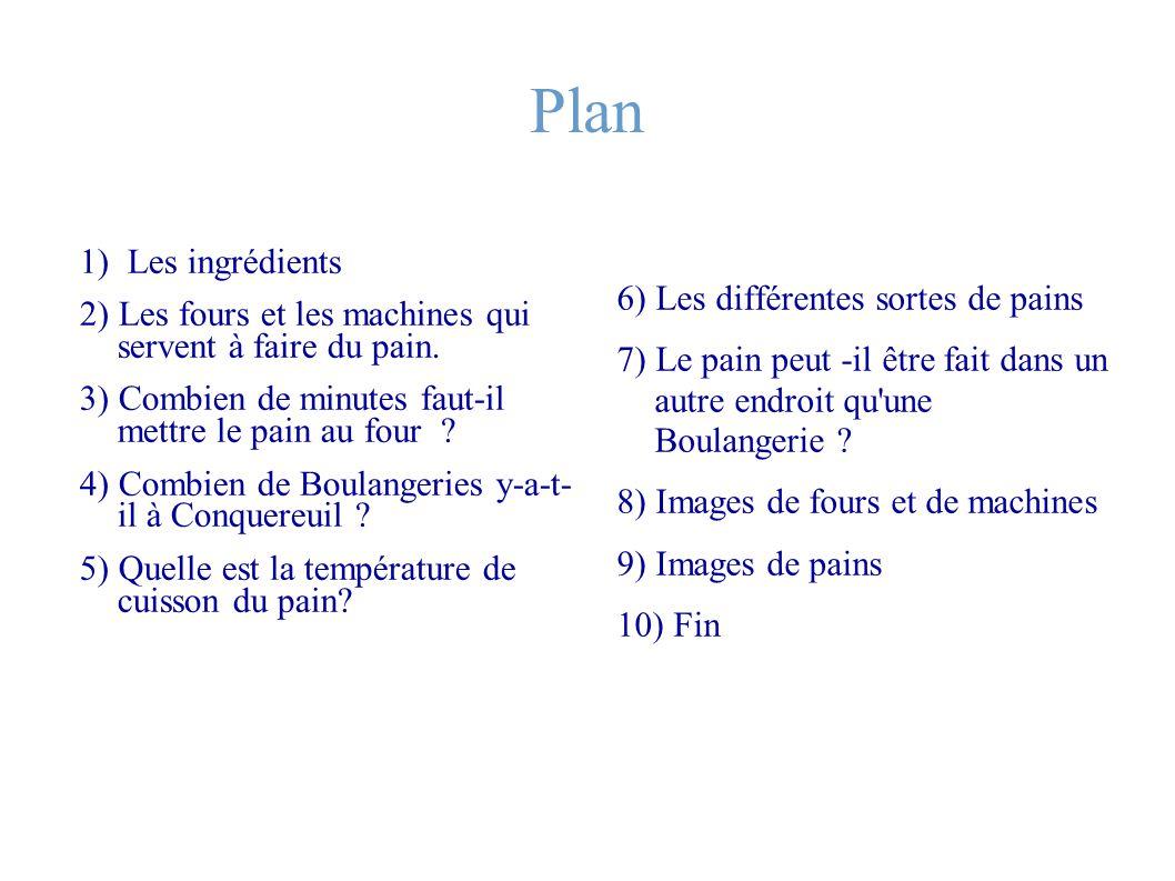 Plan 1) Les ingrédients 6) Les différentes sortes de pains