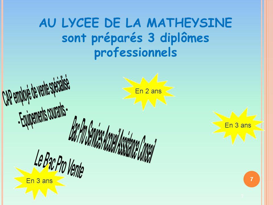 AU LYCEE DE LA MATHEYSINE sont préparés 3 diplômes professionnels