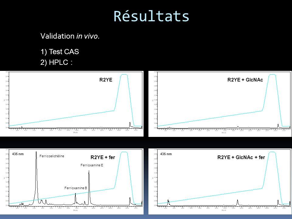 Résultats Validation in vivo. 1) Test CAS 2) HPLC : R2YE R2YE + GlcNAc
